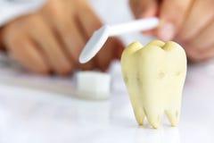 Concepto dental de la higiene Imagen de archivo libre de regalías