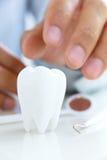 Concepto dental de la higiene Imagenes de archivo