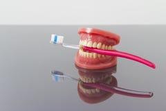 Concepto dental de la higiene y de la limpieza Fotos de archivo libres de regalías