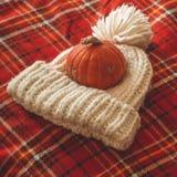Concepto feliz de la acción de gracias Calabaza hermosa, sombrero, en rojo de la tela escocesa Saludos de las estaciones Otoño ac imagen de archivo
