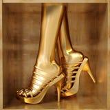 Concepto femenino de las piernas Imagen de archivo