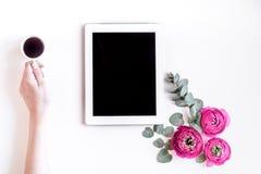 Concepto floral con las flores rosadas en la maqueta blanca de la opinión superior del fondo Foto de archivo