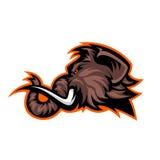 Concepto furioso del logotipo del vector del deporte de la cabeza del mamut lanoso aislado en el fondo blanco ilustración del vector