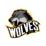 Concepto furioso del logotipo del vector del deporte del lobo aislado en el fondo blanco Imagen de archivo libre de regalías
