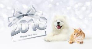 Concepto, gato y perro de la Feliz Año Nuevo de los animales con el marco de caja de regalo Fotografía de archivo