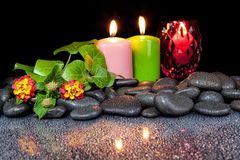 Concepto hermoso del balneario de flor floreciente, de velas y de sto negro Imagen de archivo