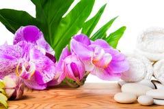 Concepto hermoso del balneario de la orquídea floreciente de la lila, piedras blancas, a Imagenes de archivo