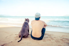 Concepto, hombre y perro de la amistad sentándose junto en la playa en la puesta del sol Fotografía de archivo