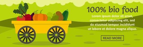 concepto horizontal de la bio bandera de la comida del 100 por ciento Imagen de archivo libre de regalías