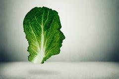 Concepto humano de la dieta sana Imagenes de archivo
