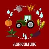 Concepto infographic plano de la agricultura Imágenes de archivo libres de regalías