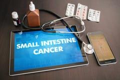 Concepto médico o de la diagnosis del cáncer del intestino delgado (tipo del cáncer) imagen de archivo libre de regalías