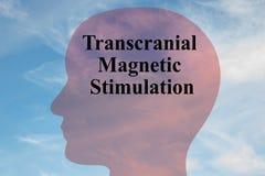 Concepto magnético Transcranial del estímulo libre illustration