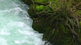 Concepto natural de la cala hermosa de la cascada metrajes