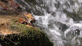 Concepto natural de la cala hermosa de la cascada almacen de metraje de vídeo