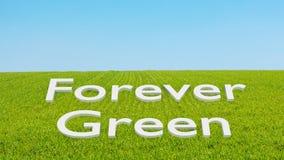 Concepto para siempre verde stock de ilustración