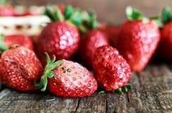 Concepto putrefacto gmo de las fresas fotografía de archivo libre de regalías