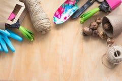 Concepto que cultiva un huerto Jacinto del almácigo, utensilios de jardinería, tijeras, guita, bolsa de papel que hace compras, g Foto de archivo libre de regalías