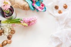 Concepto que cultiva un huerto Todavía vida del jacinto del almácigo, utensilios de jardinería, tijeras, guita, gladiolo de los t Fotos de archivo