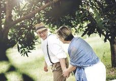 Concepto romántico del parque de naturaleza del amor adulto mayor de los pares Imagen de archivo
