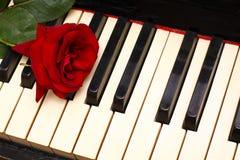 Concepto romántico - el rojo se levantó en claves del piano Fotografía de archivo libre de regalías