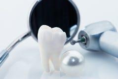 Concepto sano de los dientes Imagen de archivo libre de regalías