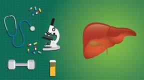 Concepto sano del hígado con ciencia del informe médico de la medicina Foto de archivo libre de regalías