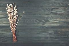 Concepto: Semana Santa Símbolo del día de fiesta Pascua - el sauce ramifica en un fondo negro con el espacio de la copia Imagenes de archivo