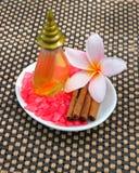 Concepto tropical del balneario con la flor del plumeria, cinnamo Fotos de archivo libres de regalías