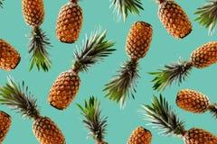 Concepto tropical del estilo del diseño retro Modelo con el pineapp del inconformista Foto de archivo