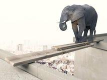 Concepto valiente del elefante fotos de archivo