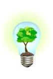 Concepto verde Imagen de archivo