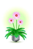 Concepto verde Foto de archivo libre de regalías