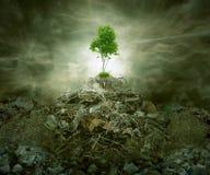 Concepto verde como árbol en el montón superior de la montaña de la basura Fotos de archivo libres de regalías