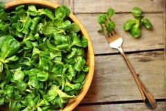 Concepto verde de la dieta de la hoja con la ensalada fresca de la valeriana Imágenes de archivo libres de regalías