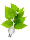 Concepto verde de la energía imagenes de archivo
