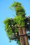 Concepto verde de la energía Imagen de archivo