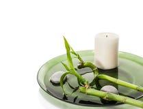 Concepto verde del balneario con el bambú Foto de archivo libre de regalías