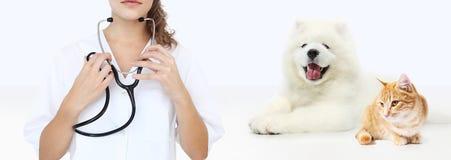 Concepto veterinario del cuidado veterinario con el estetoscopio, perro y Fotos de archivo libres de regalías