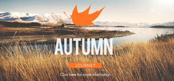 Concepto vibrante de la estación de Autumn Fall Foliage Fresh Nature Foto de archivo libre de regalías