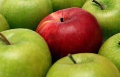 Conceptos de la separación con las manzanas Foto de archivo libre de regalías
