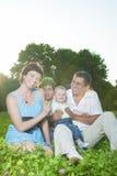 Concepts de la famille Jeune famille caucasienne de quatre personnes posant ensemble dehors en parc Images stock