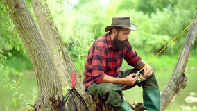 Concepts of successful fishing. Fly fishing is most renowned as a method for catching trout and salmon. Angler. Fly fishing in the pristine wilderness of stock video footage