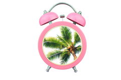 Conceptual art time to relax : coconut tree within pink alarm clock isolated on white background Royalty Free Stock Photography