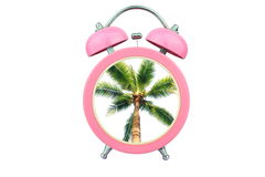 Conceptual art time to relax : coconut tree within pink alarm clock isolated on white background Royalty Free Stock Images