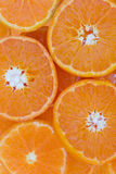 Conceptual background pattern of sliced juicy clementines Stock Photography