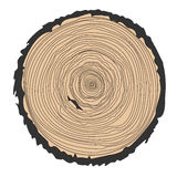 Conceptual background with tree-rings. Ring illustration isolated on white Royalty Free Stock Photo