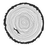 Conceptual background with tree-rings. Vector graphics. Royalty Free Stock Photography