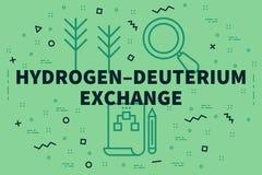 Conceptual business illustration with the words hydrogen–deuterium exchange stock illustration