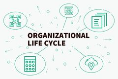 Conceptual business illustration with the words organizational l. Ife cycle Stock Photo